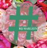 Hashtag Bij Marleen