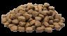 DOGgear Nederland / Lankester-Petfood