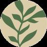 Herbsy